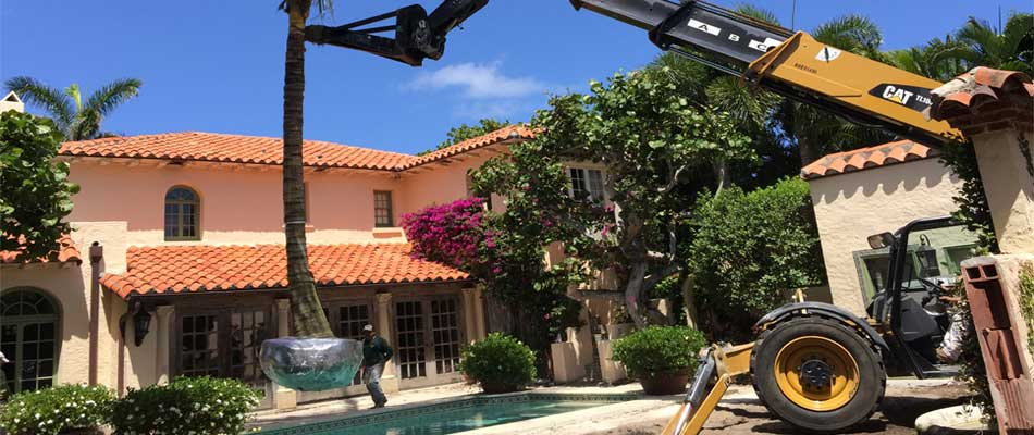 Large palm tree installation in the back of a home in Palm Beach, %%state.