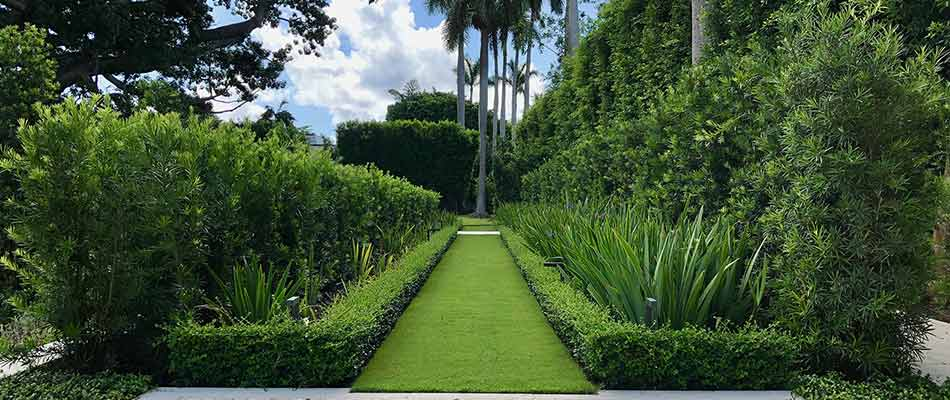 Our landscape trimming and pruning services for a property in Jupiter, FL.