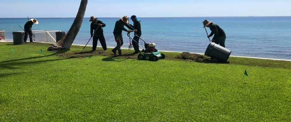 This lawn in Jupiter, FL is being verticut to remove thatch buildup.