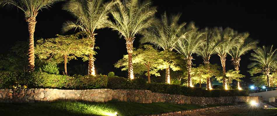 Outdoor lighting systems such as this one in Manalapan, FL highlight your property.