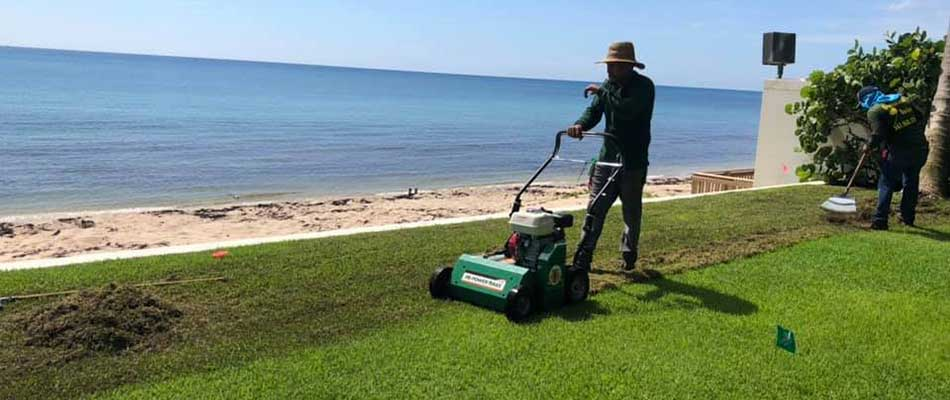 Verticutting a lawn for a beachfront property in Palm Beach, FL.