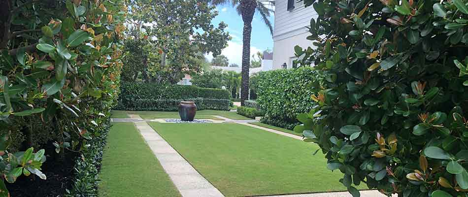 This lawn in Manalapan, FL is healthy thanks to fertilization treatments.