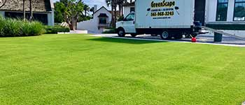 Well fertilized home lawn in Palm Beach, FL.