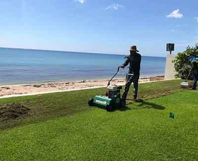 Verticutting a lawn in Palm Beach, FL.