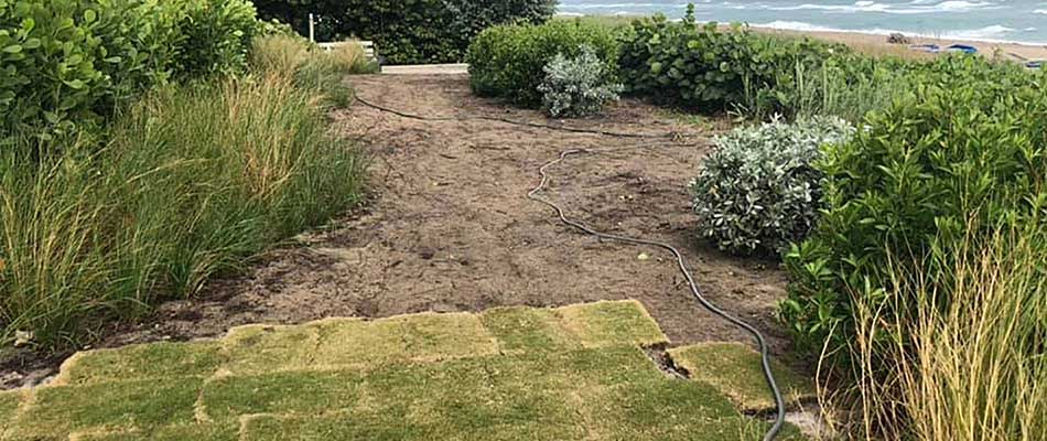 Landscaping & Sod Installation at Beachfront Property